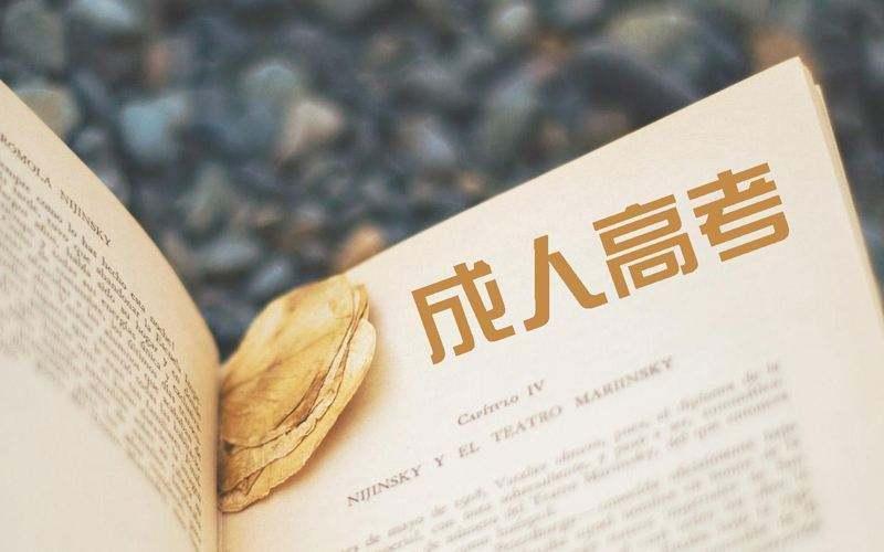 2020成人高等教育学士学位外国语水平考试大纲